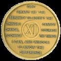 year eleven medallion