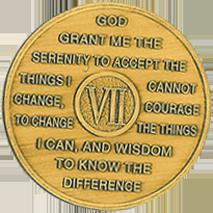 Year Seven Medallion
