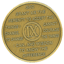 Year Nine Medallion