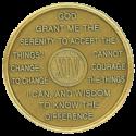 year 14 medallion