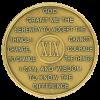 year 19 medallion