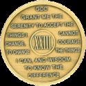 year 23 medallion